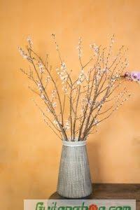 198 mẫu hoa đẹp nhất